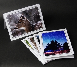 Fine photo greeting cards from Island Light Photography.