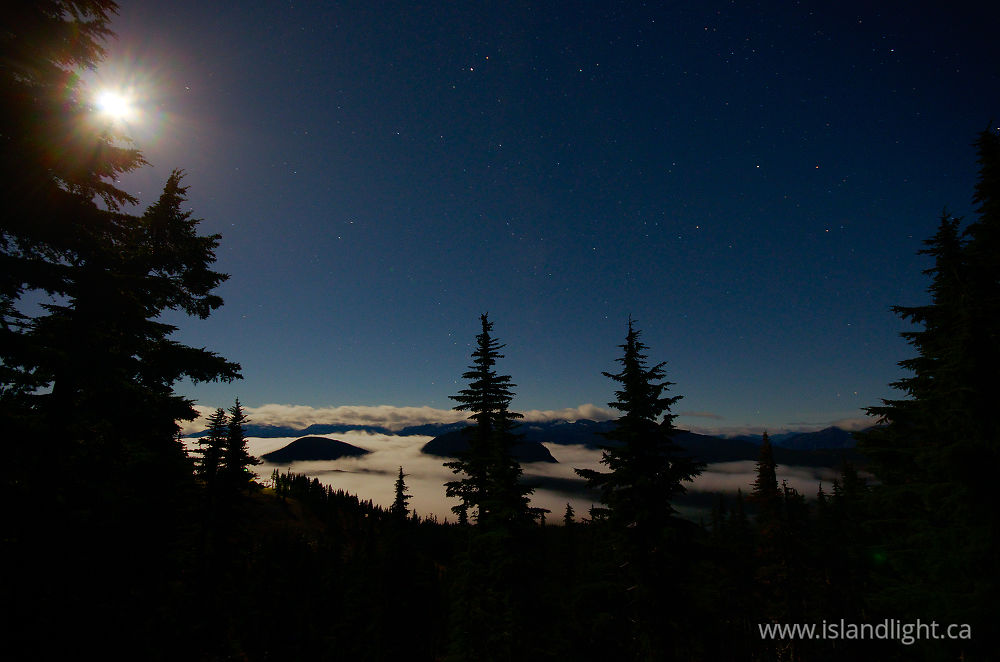 Landscape  photo from  Mount Washington, British Columbia Canada.