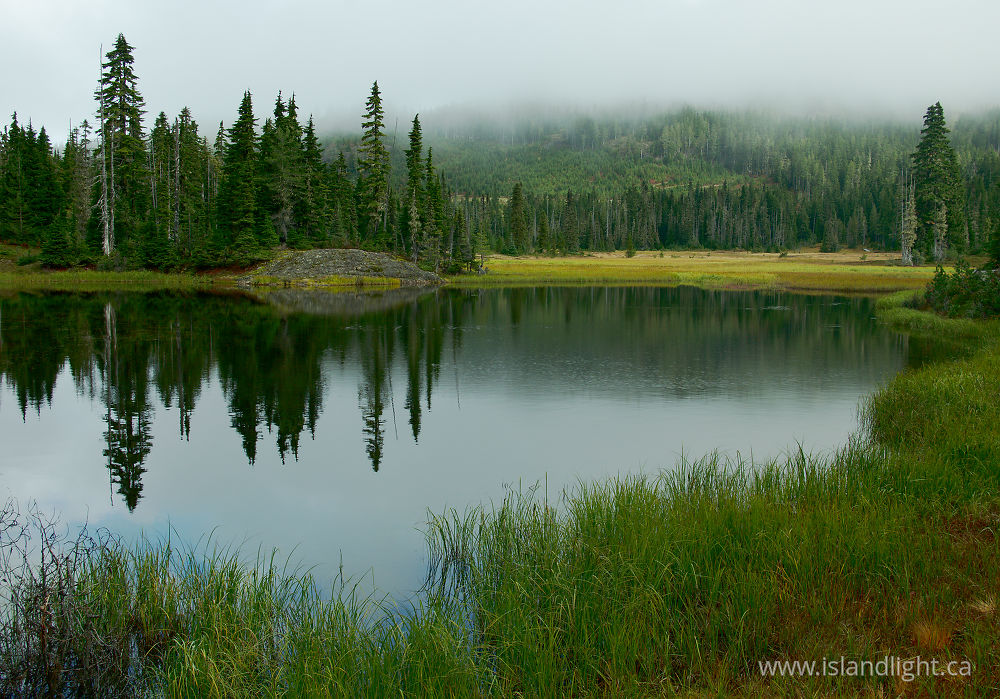 Landscape  photo from  Paradise Meadows, British Columbia Canada.