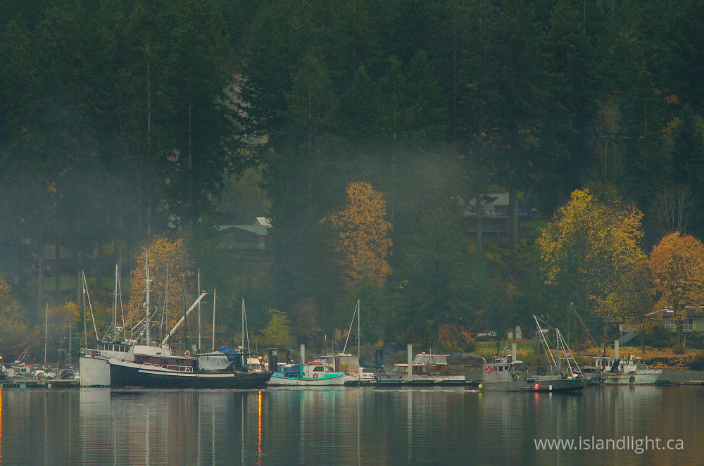 Landscape  photo from Heriot Bay Quadra Island, British Columbia Canada.