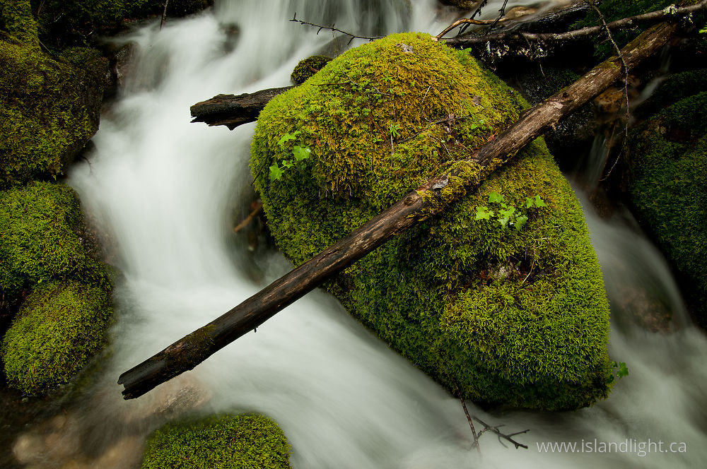 Landscape photo from Climax Creek Slocan Valley, BC Canada.