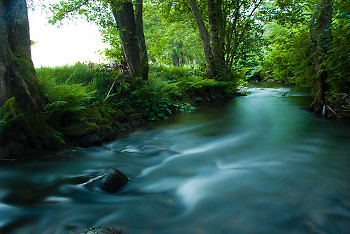 River picture from Aillevillers France.