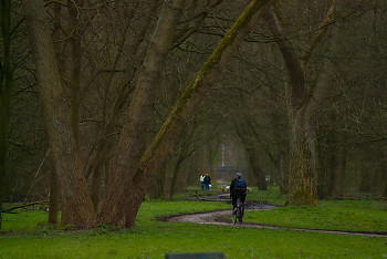 Amsterdam Cyclist ~ Park picture from Amsterdam Netherlands.