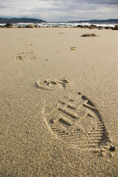 Boot Print ~ Beach picture from Cortes Island Canada.