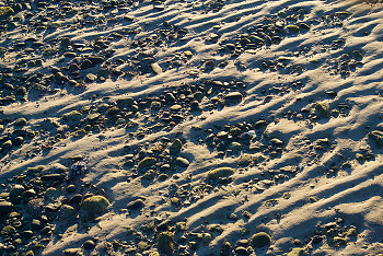 Looking at Sand  ~ beach picture from Cortes Island Canada.
