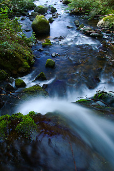 Waterfall Seen from Above ~ Creek picture from Cortes Island Canada.