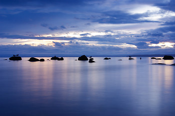High Tide ~ Seascape  picture from Cortes Island Canada.