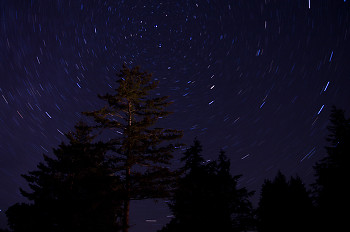 Polaris ~ Star picture from Cortes Island Canada.