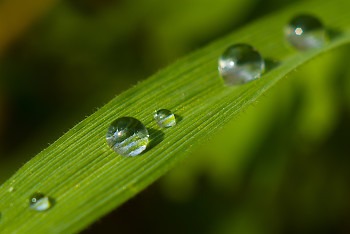 Crystal ~ droplet picture from Aillevillers France.