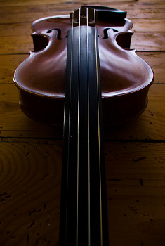 Fiddle ~ Fiddle picture from Aillevillers France.