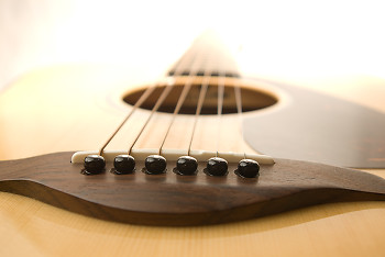 Steel Sting Guitar ~ Guitar picture from Cortes Island Canada.