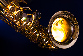Saxophone ~ Musical Instrument picture from Cortes Island Canada.