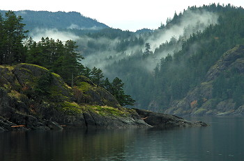 Coastal Landscape ~ Landscape picture from Quadra Island Canada.