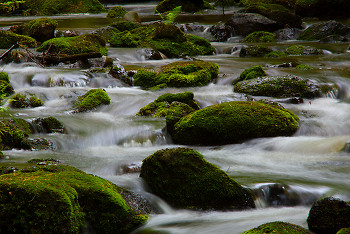 Water Flowing Over Stones ~ River picture from  France.