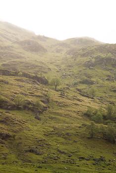 Landscape picture from Scotland Scotland.