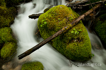 A Rock and a Log ~ Creek picture from Slocan Valley Canada.