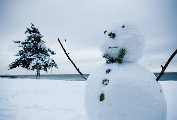 Snowman ~ Winter picture from Cortes Island Canada.