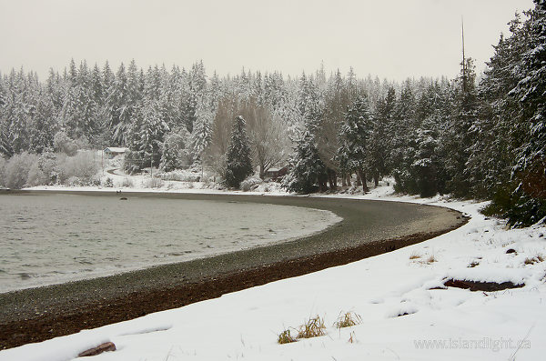 Winter at Smelt Bay - Cortes Island  photo
