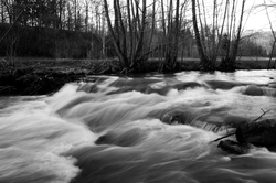 La Auberonne in Black and White ~ River picture from Aillevillers France.