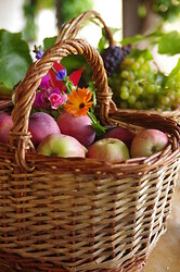 Abundance  ~ Basket picture from Cortes Island Canada.