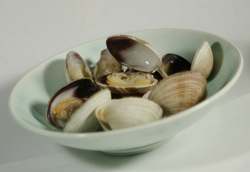 Steamed Butter Clams ~ Butter clams picture from Cortes Island Canada.