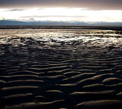 Beach ~ Beach picture from Cortes Island Canada.