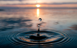 One More Drop in the Ocean ~ Droplet picture from Cortes Island Canada.