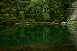 Still Water in Carrington Lagoon ~ Landscape  picture from Cortes Island Canada.