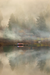Misty Morning ~ Landscape picture from Cortes Island Canada.