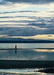 A Walk on the Tide Flats ~ Landscape  picture from Cortes Island Canada.
