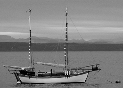 Adamastor ~ Sail boat picture from Cortes Island Canada.