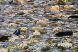 A Stream meets the Sea ~ Seashore picture from Cortes Island Canada.