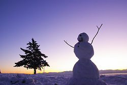 A Happy Snowman ~ Snowman picture from Cortes Island Canada.