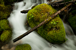 A Rock and a Log - Slocan Valley Creek photo