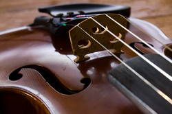 Violin -  Fiddle photo