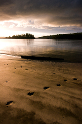 Footprints in the Sand 2 - Cortes Island  photo