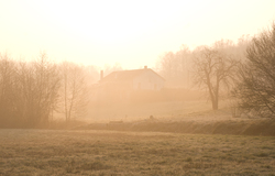 Misty Morning - Aillevillers  photo