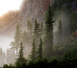 Mountain Sentinels ~ Landscape  picture from Mount Washington Canada.