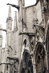 Gargoyles at Notre dame ~ Church picture from Paris France.