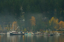 Heriot Bay  ~ Harbour picture from Quadra Island Canada.