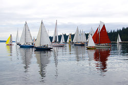 Start of the Race - Cortes Island Sailing photo