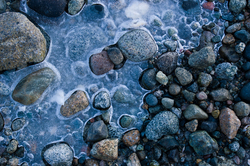 Stones Frozen - Cortes Island Shoreline photo