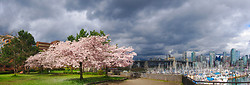 Springtime in Vancouver ~ Urban Panorama picture from Vancouver Canada.