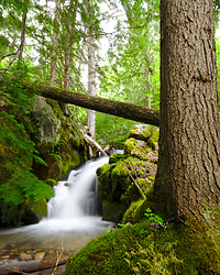 Climax Creek Waterfall - Slocan Valley Waterfall photo