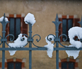 Snow on Fence - Fence photo from  Aillevillers   Haute-Saone, France