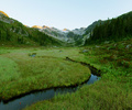 Brandywine Meadows Panorama - Alpine Meadow photo from  Brandywine Valley British Columbia, Canada