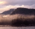 Morning Mist - Wilderness photo from  Broughton Archipelago BC, Canada