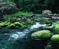 Emerald Creek - Landscape photo from Mansons Landing Cortes Island BC, Canada