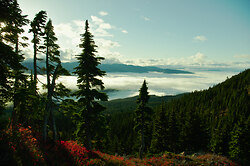 Above The Clouds - Vancouver Island Alpine Landscape photo