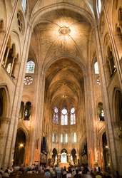 Notre dam - Paris Cathedral photo